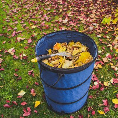 sud élagage montpellier nîmes ramassage des feuilles entretien de jardin
