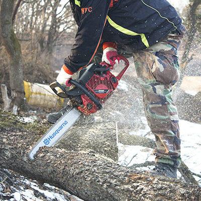 tronçonnage abattage d'arbres Montpellier Nîmes Lunel gard hérault